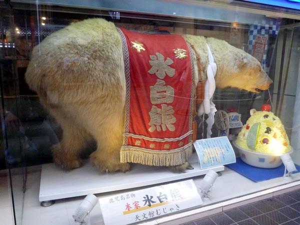 天文館むじゃき 氷白熊(しろくま)の本家 白熊の剥製